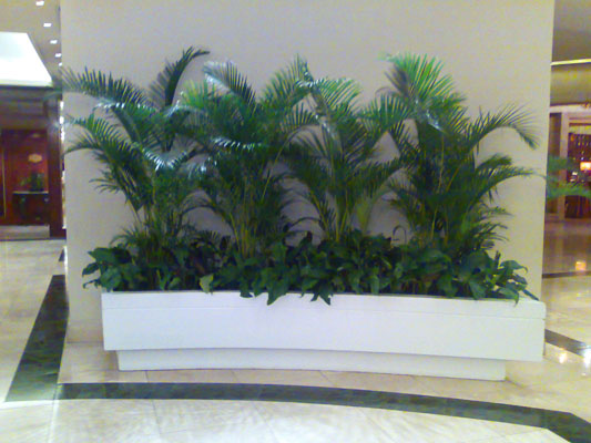 Whinter chapter grotto landscaping designs philippines for Garden design ideas in philippines